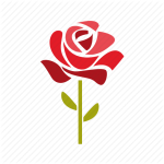 cropped-jarthursflowers-icon.png